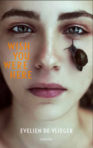 wish you were here evelien de vlieger young adult Querido